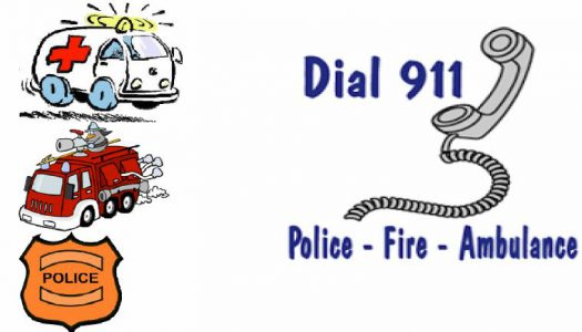Guide to Using 911